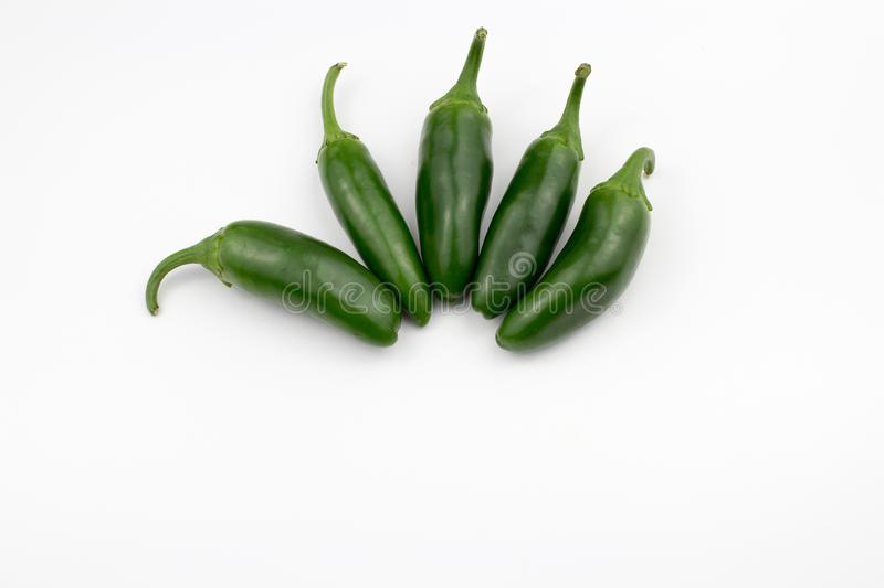 Group of fresh, healthy jalapeno peppers. From my garden. isolated background, multiple uses is possible royalty free stock images