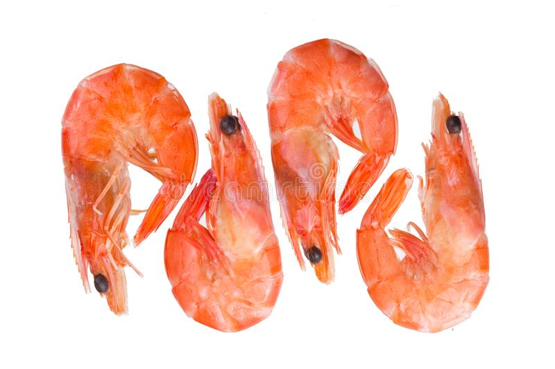 One tasty fresh red boiled cooked shrimp isolated on white background stock images