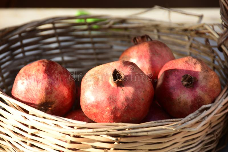 Group of fresh ripe pomegranate fruits in basket on display at local market stock photography