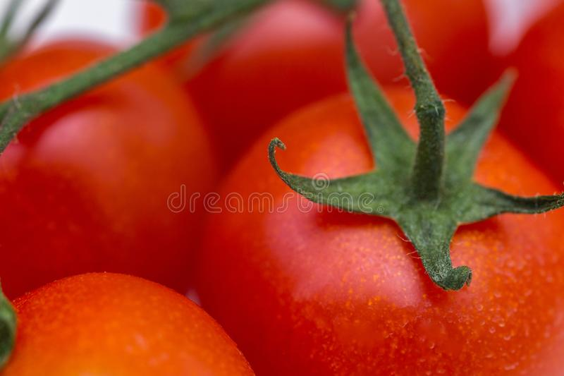 Group of fresh tomatoes. red cherry tomatoes royalty free stock photography