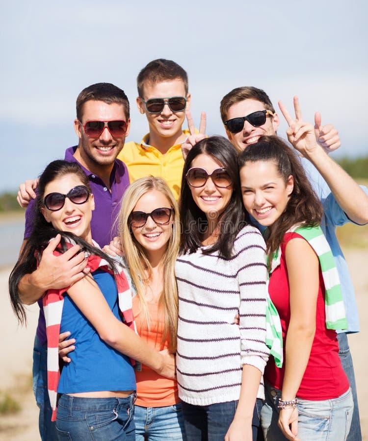 Download Group Of Friends Having Fun On The Beach Stock Image - Image of joyful, beautiful: 34394705