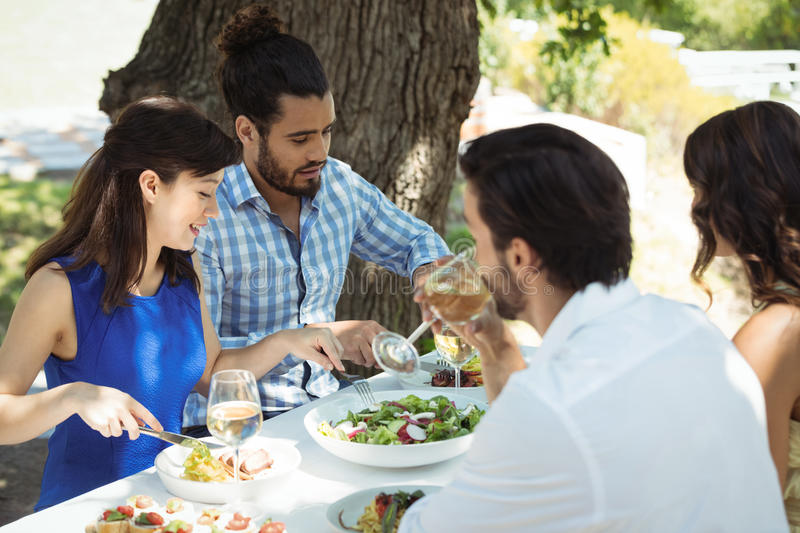 Group of friends having lunch royalty free stock photography
