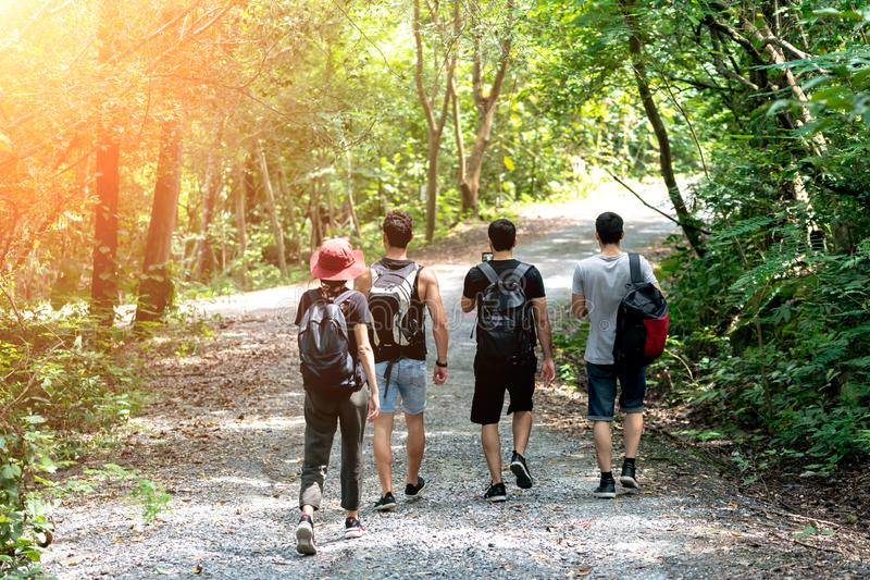 Group Of Friends hiking together through the forest. Travel Hiking and Adventure in forest royalty free stock images