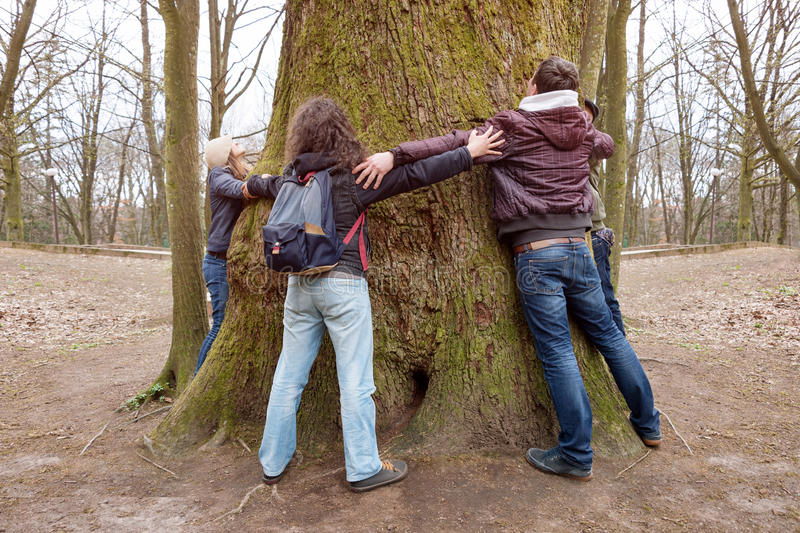 Group of friends hugging giant tree trunk and holding hands during hiking excursion. Tree hugging, tourism, ecology stock photo