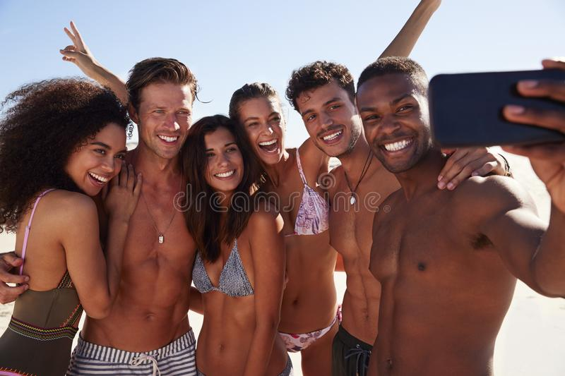 Group Of Friends Posing For Selfie Together On Beach Vacation royalty free stock image