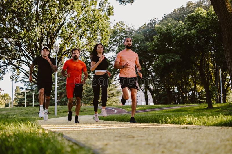 Group of friends running in the park royalty free stock image