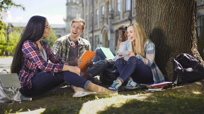 Group of friends sitting under tree talking to each other laughing, togetherness stock images