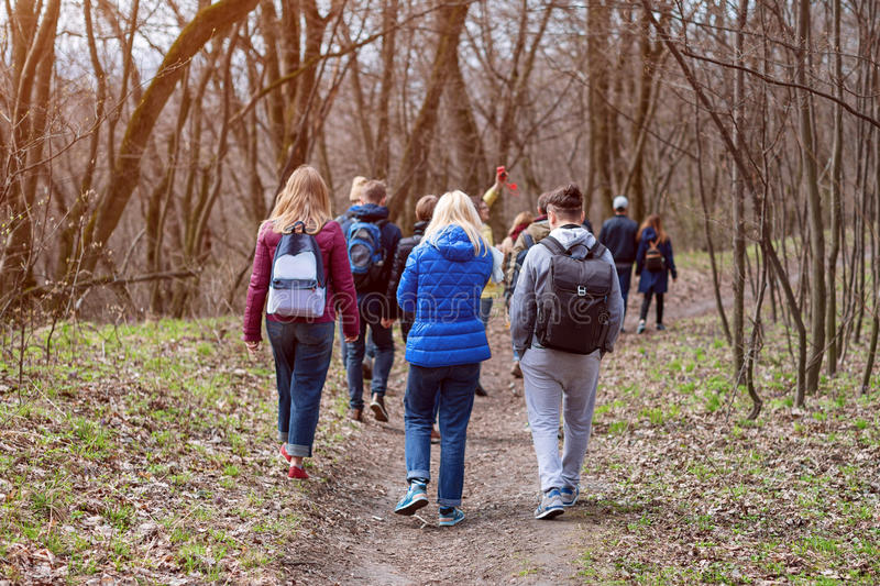 Group of friends walking with backpacks in spring forest from back. Backpackers hiking in the woods. Adventure, travel royalty free stock photography