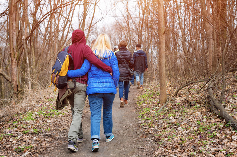 Group of friends walking with backpacks in spring forest from back. Backpackers hiking in the woods. Adventure, travel stock photo