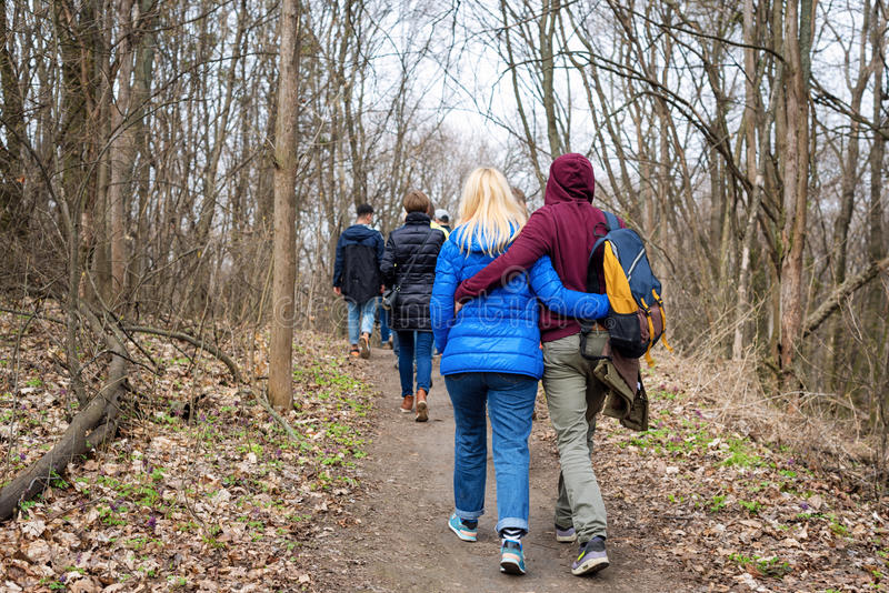 Group of friends walking with backpacks in spring forest from back. Backpackers hiking in the woods. Adventure, travel stock photos