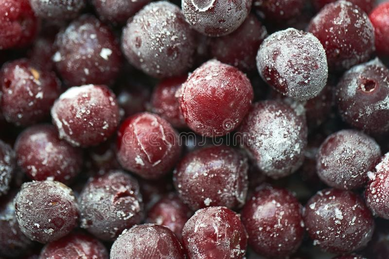 Group of frozen cherries closeup royalty free stock image