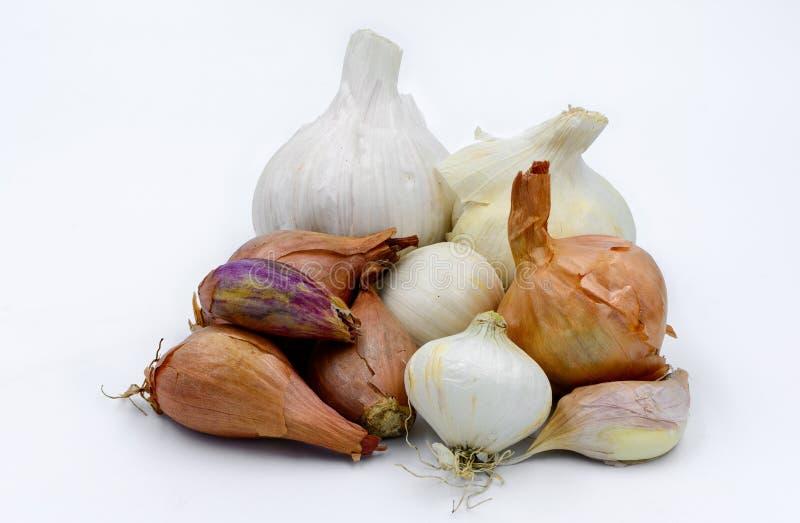 Group of Garlics, shallots and onions stock photo