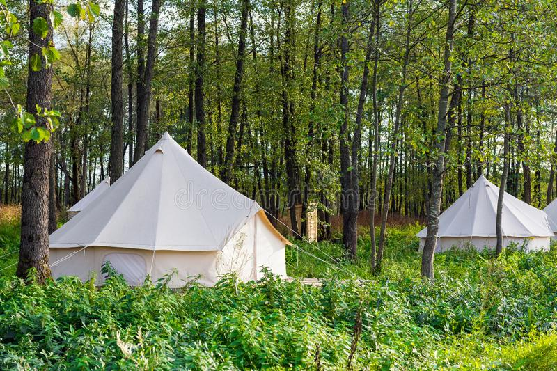 Group of glamping bell tents. At forest stock images