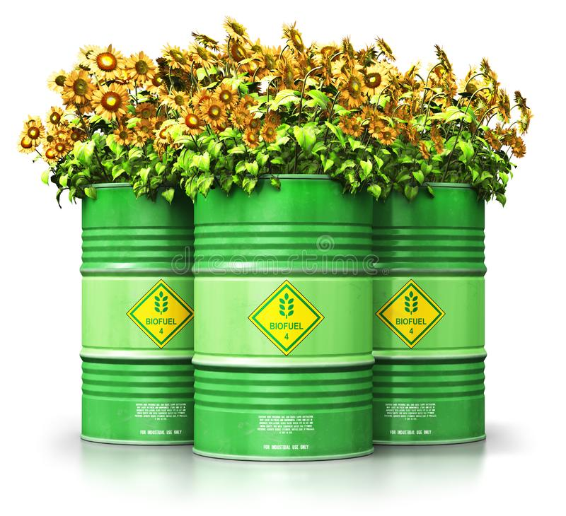 Group of green biofuel drums with sunflowers isolated on white b stock illustration