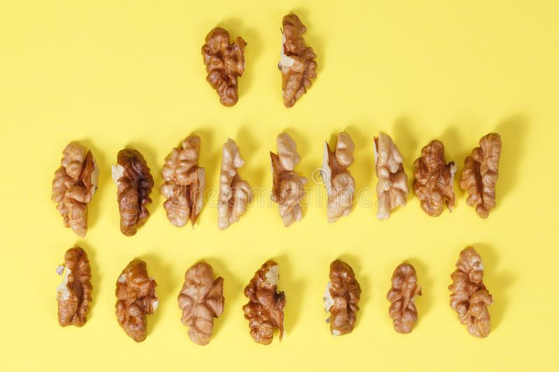 group of halves of walnut. stock images