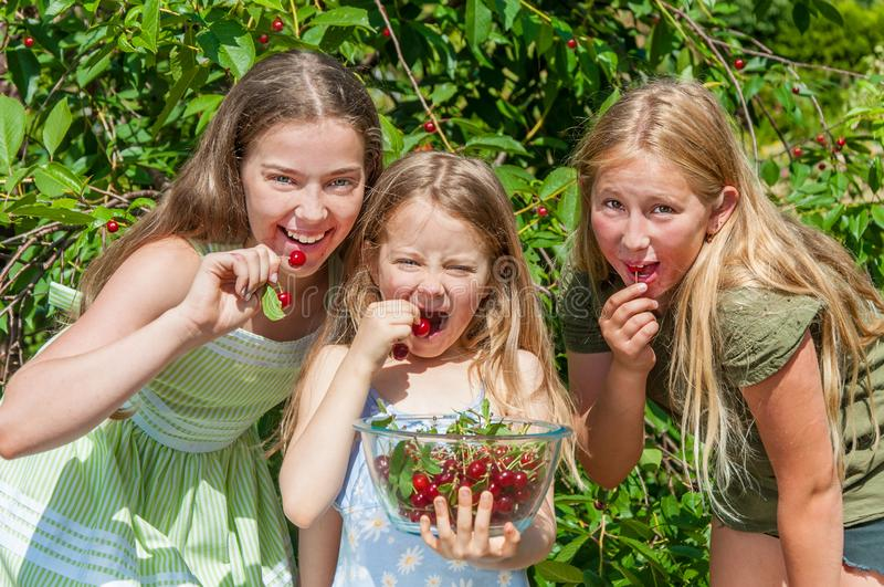 Group of happy kids eating cherry royalty free stock images