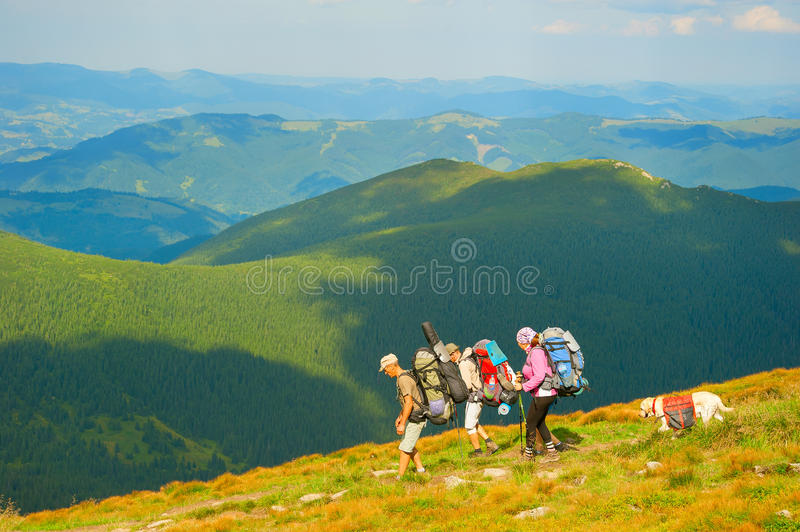 Group of hikers at mountains. CARPATHIANS MOUNTAINS, UKRAINE - AUG 04, 2016: Group of hikers with a dog on top of mountains. Ukraine used to attract more than 20 royalty free stock images