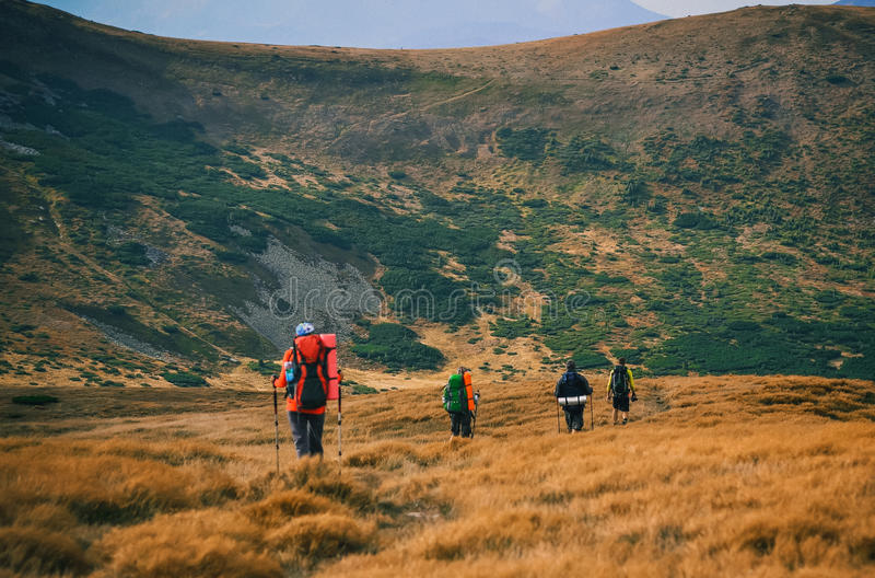 Group of hikers in the mountains, view of Carpathians mountains. In Ukraine stock image