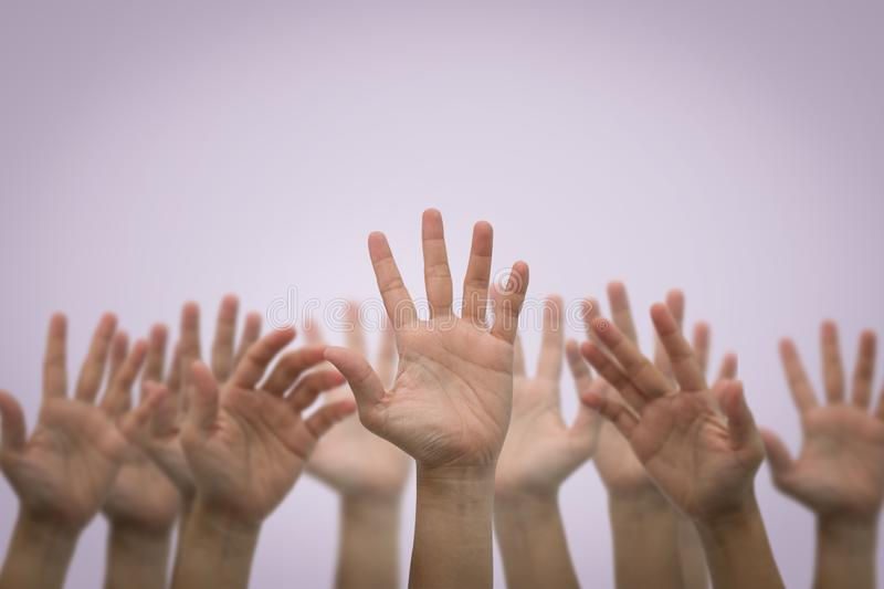 Group of human hands raised high up on pink royalty free stock image