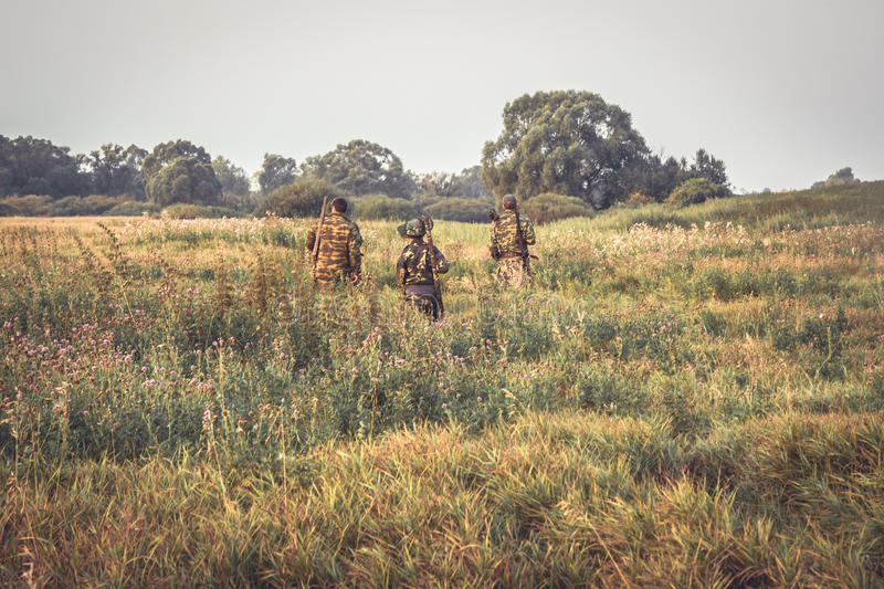 Group of hunters crossing through tall grass in rural field at dawn during hunting season stock image