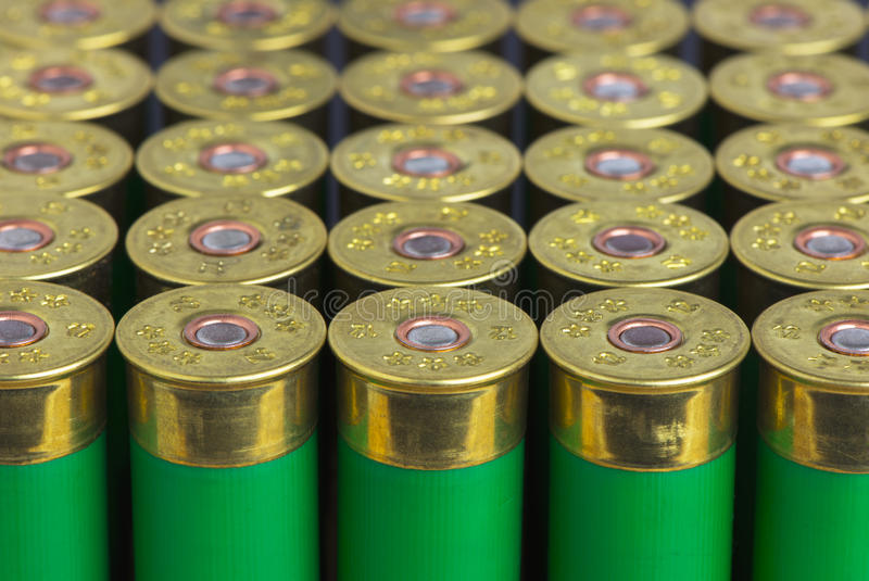Group hunting cartridges. For shotgun royalty free stock photography