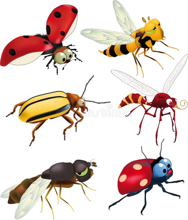 Group of insects royalty free illustration
