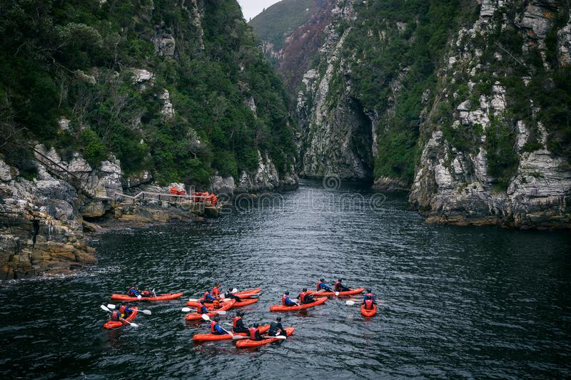 Group kayaking in river canyon in Knysna, South Africa. Group kayaking in river canyon in national park in Knysna, South Africa stock photo