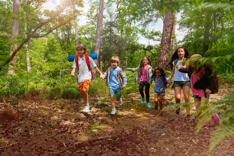 Group of kids on hiking walk holding hands royalty free stock image