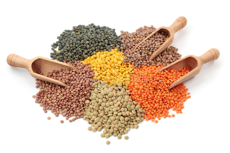 Group of lentils. On white background stock images