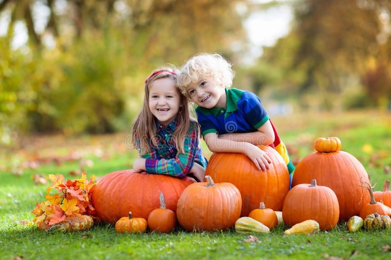Kids having fun at pumpkin patch. Group of little children enjoying harvest festival celebration at pumpkin patch. Kids picking and carving pumpkins at country royalty free stock photography