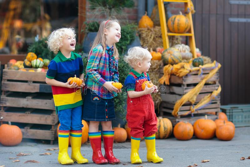 Kids having fun at pumpkin patch. Group of little children enjoying harvest festival celebration at pumpkin patch. Kids picking and carving pumpkins at country stock photos