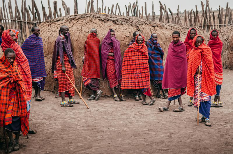 Group Masai or Maasai tribe peoples in red cloth standing by clay hut. Ethnic group of Ngorongoro Consevation, Serengeti in royalty free stock photos
