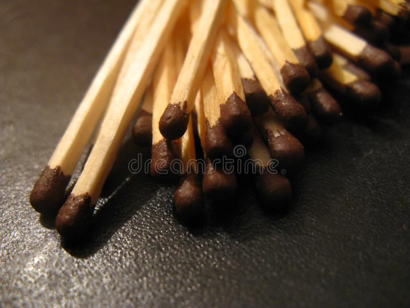 Rdinary brown-headed matches wallow in a mess stock photos