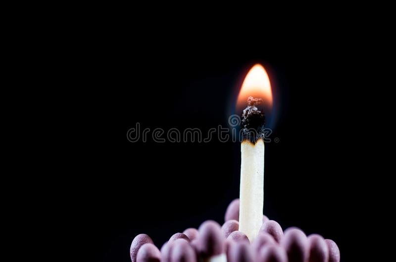 Group of matchsticks, one burning, stock photo