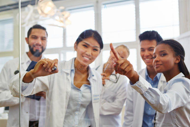 Group of medical school students. Interracial group of medical school students in study group royalty free stock images