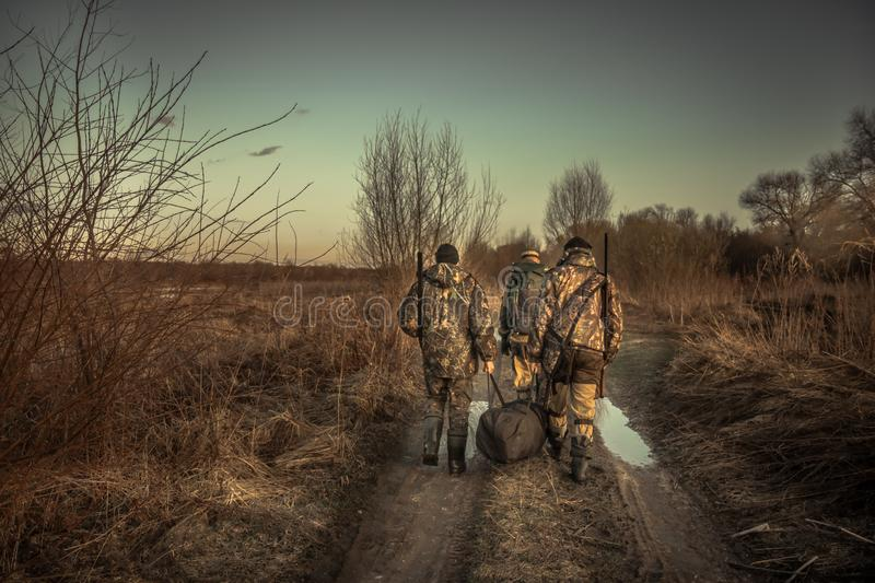 Group of men hunters with hunting equipment walking on country road hunting season sunset stock photos