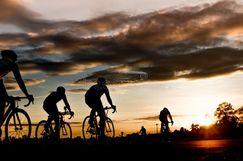 Group of men ride bicycles at sunset with sunbeam over. Silhouette trees background royalty free stock images