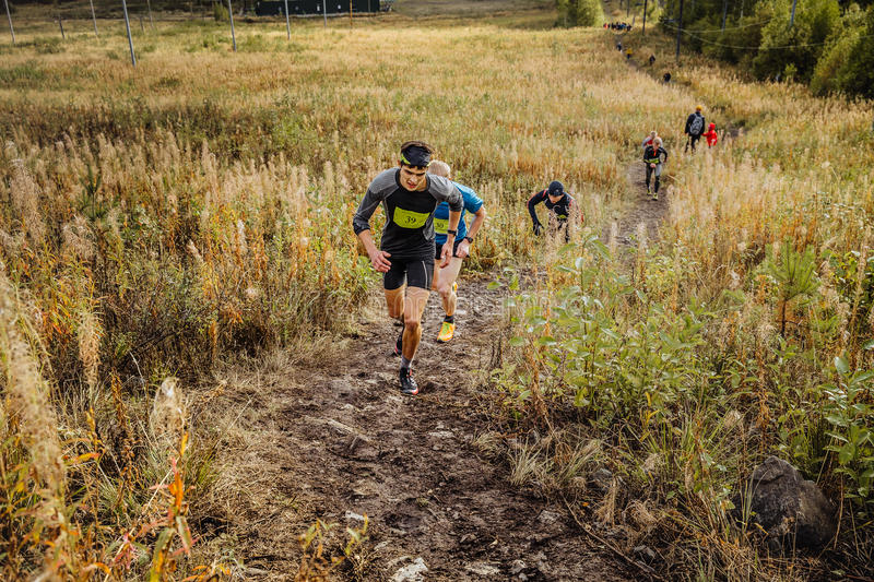 Group of men runners skyrunners running uphill trail in grass royalty free stock photography