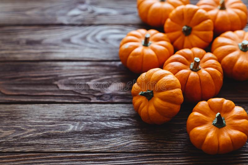 A group of miniature pumpkin. On a wooden slat background royalty free stock photos