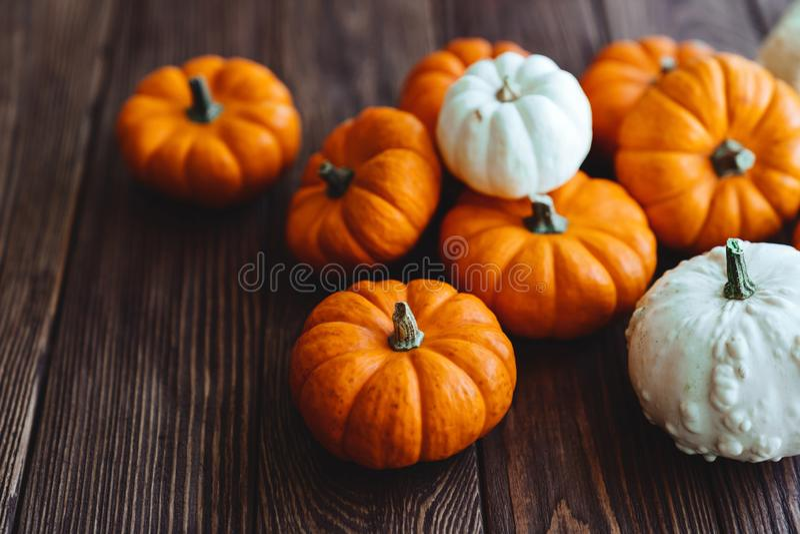 A group of miniature pumpkin. On a wooden slat background stock photos