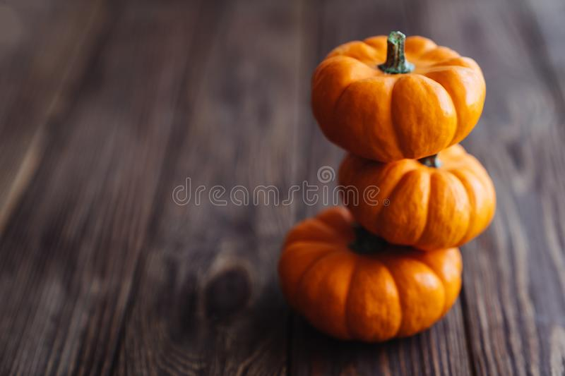 A group of miniature pumpkin. On a wooden slat background stock image