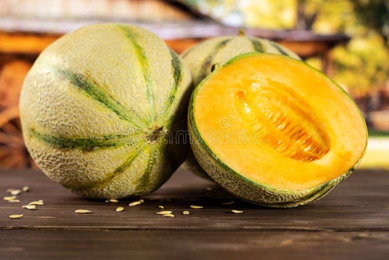 Fresh melon cantaloupe with cart royalty free stock photos