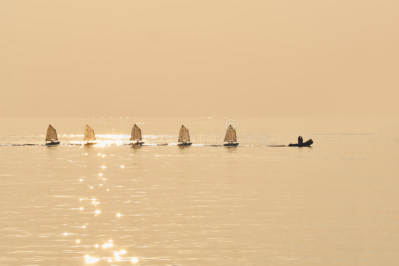 Group of Optimist sails towed into port bu rubber boat. Line of Optimist (Small learning sails) towed into port bu rubber boat in sephia golden atmosphere of royalty free stock photography