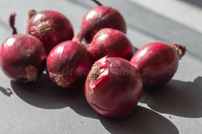 Group of organic red onion royalty free stock images