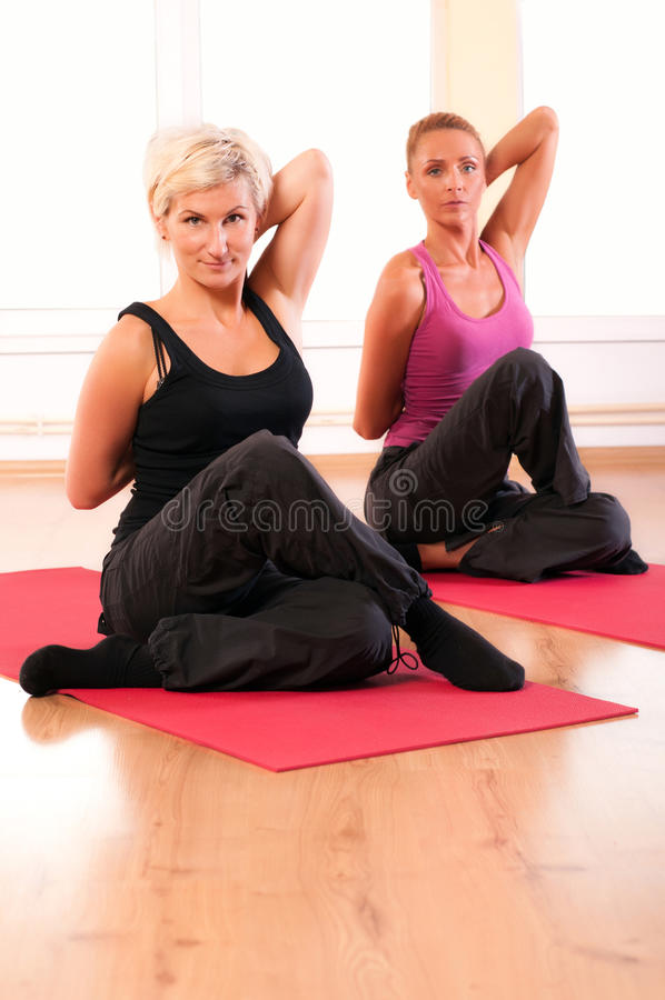 Download Group Of People Doing Fitness Exercise Stock Image - Image: 22827805