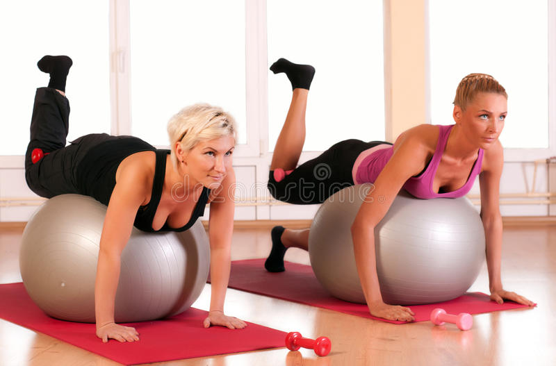 Download Group Of People Doing Fitness Exercise Stock Image - Image: 22981567
