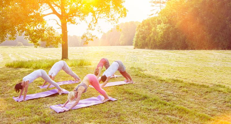 Group of people doing yoga in park stock photo