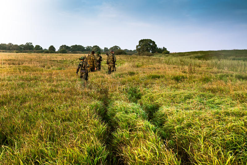 Group of people going into the distance on a green field with tall grass during sunrise royalty free stock images