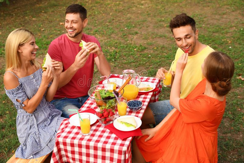 Group of people having picnic at table on summer day royalty free stock photography