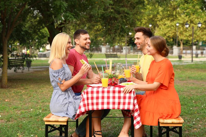 Group of people having picnic at table on summer day royalty free stock images